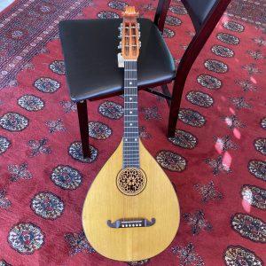 swedish crafton lute guitar